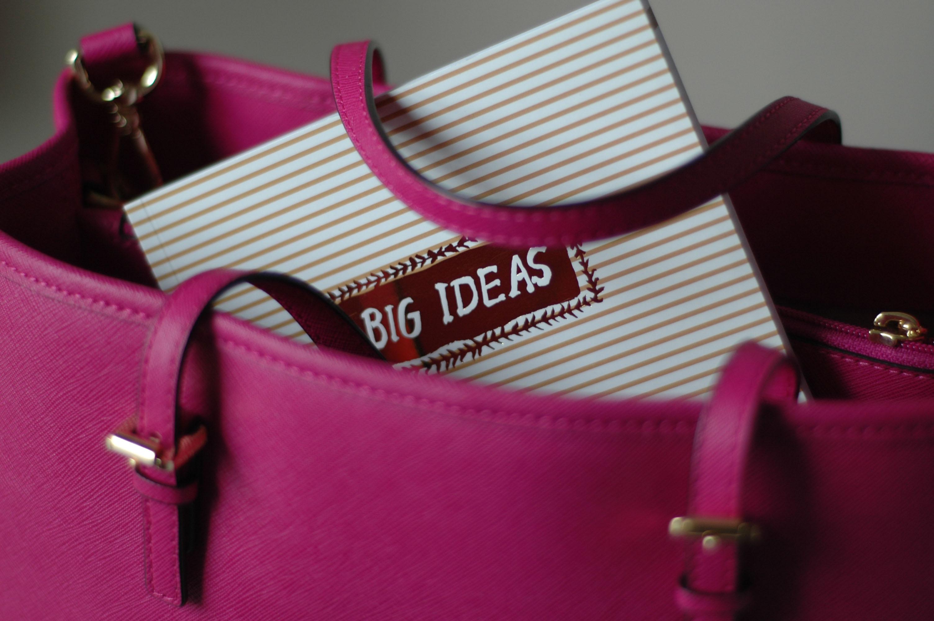 Big Ideas Egg Press Journal