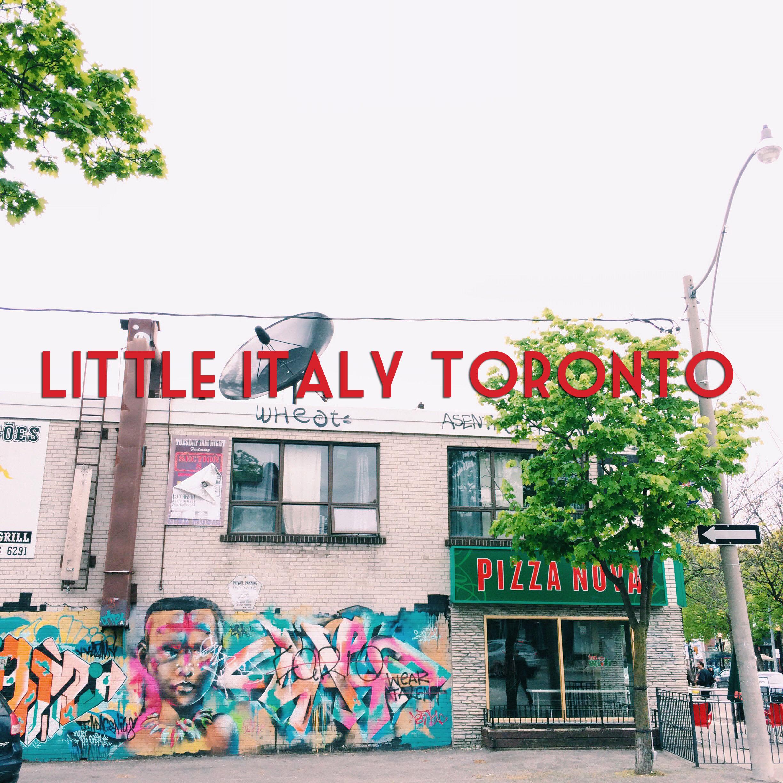 Little Italy Toronto