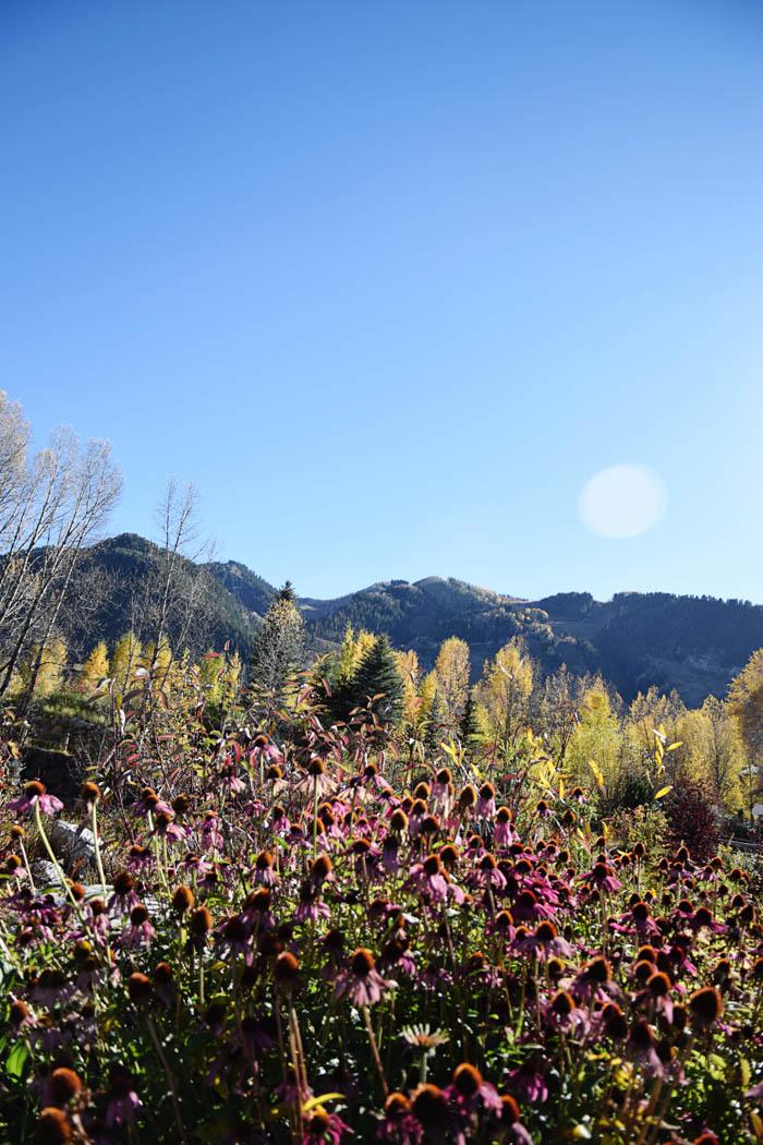 John-Denver-Sanctuary-Aspen007